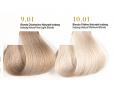 Blond foarte deschis cenusiu - Vopsea Colora MaXXelle cu extract de Goji 100 ML